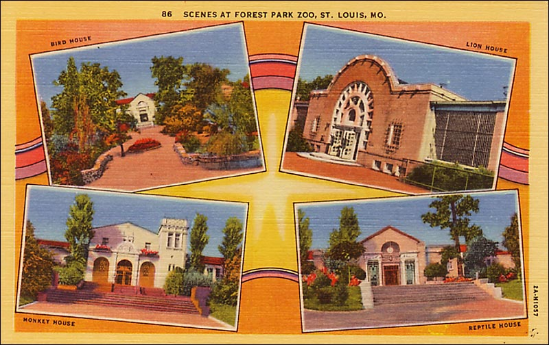 This multi-view of the zoo in St. Louis, Mo. has that very garish look for which Linens are famous. While common Linens can still be found for $1 and less, and outstanding advertising cards can sell for $35-plus, most are in the $3-6 range.