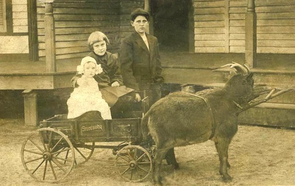 If you didn't have a goat to pull your Studebaker Junior Wagon, just hook up good ol' Dad.